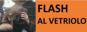 FLASH AL VETRIOLO - COMMENTI PIÙ O MENO SATIRICI DI ETC...